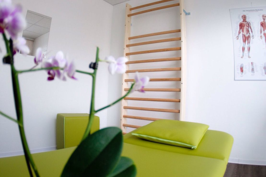Physiotherapie Liege Orchidee Sprossenwand